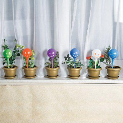 Как сохранить жизнь вашим растениям, пока вы в отпуске?