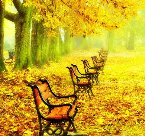 Осенняя хандра…