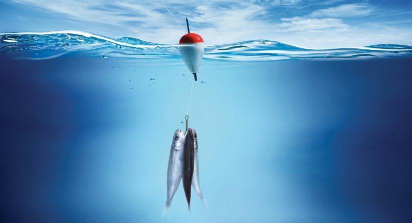 Ловись, Рыбка, Большая и Малая…